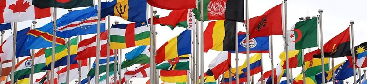 Every country's flags flying in a cluster of flag poles